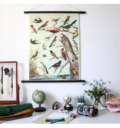 Affiche vintage oiseaux Audubon - Cavallini & Co