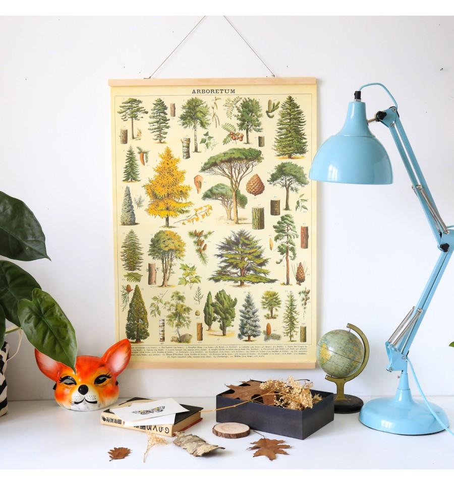 affiche pédagogique arbres