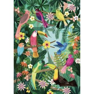 Affiche Oiseaux tropicaux Rebecca Jones - Petit Monkey