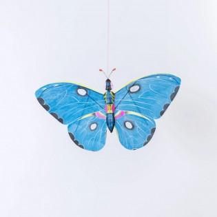 Papillon bleu Miya Petit Pan