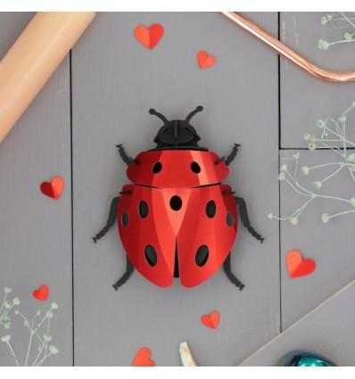 Insecte DIY Coccinelle - Assembli
