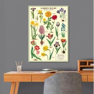 Affiche Bulbes du Jardin - Cavallini & Co