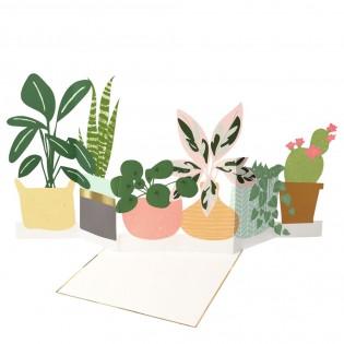 Carte plantes en pots - Meri Meri